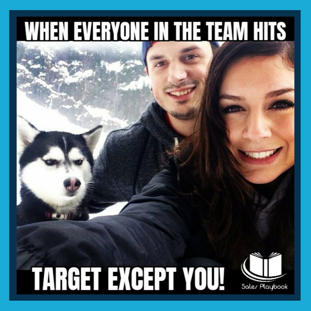 Sales meme when everyone in the team hots target except you