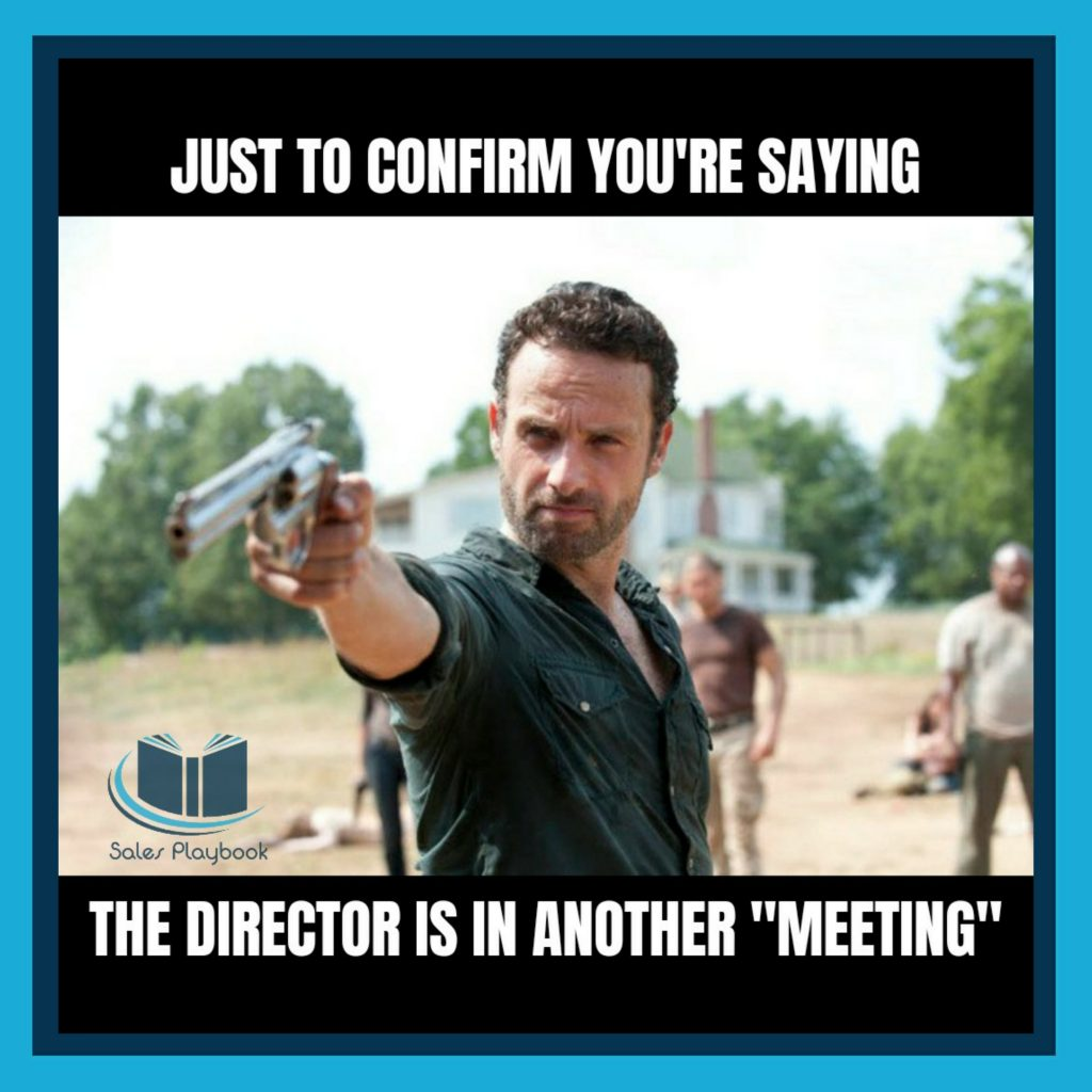 sales just to confirm you're saying the director is in another meeting